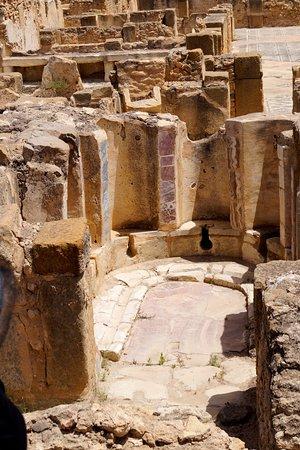 Ben Arous, Tunísia: Тот самый, воспетый гидами, общественный туалет!