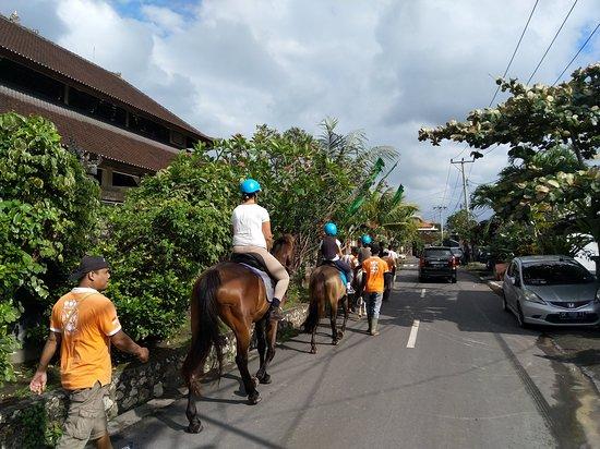 Royal Sporthorse Bali: passing the village
