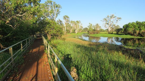 Cooinda Lodge Kakadu: Minutes away... watching birds and crocs