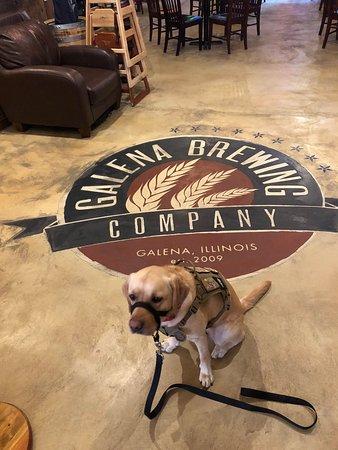 Galena Brewing Company لوحة