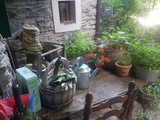 Gravere, Italie : 20180726_080321_large.jpg