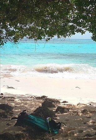 Great Guana Cay: 20180723_094112_large.jpg