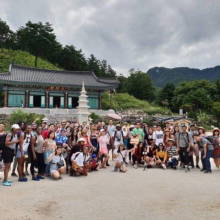 Pliko Korea Tour