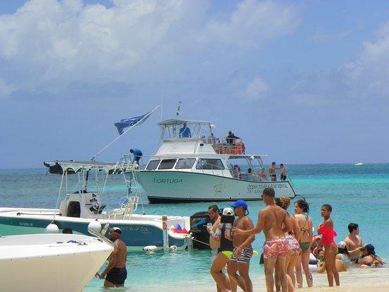 Icacos Island: 101_0459_large.jpg