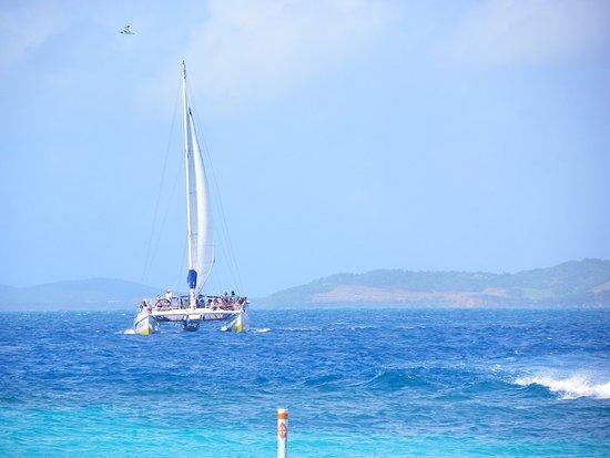 Icacos Island: 101_0444_large.jpg