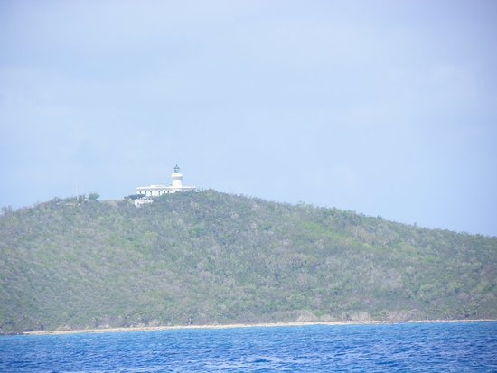 Icacos Island: 101_0446_large.jpg