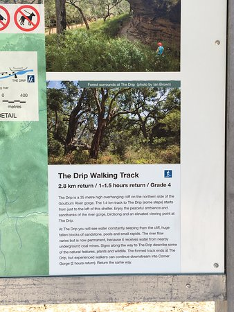 The Drip Gorge: Drip Track Notice Board