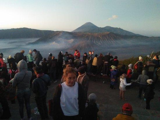 Arwana Tour Malang