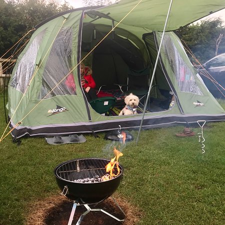 AMAZING dog friendly campsite with the best facilities I've ever seen!