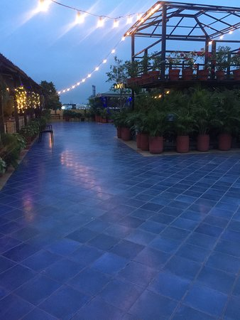 Cafe Terazza: Lights, Plants and Rooftop Cafe