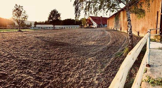 Frydlant nad Ostravici, Tsjechië: Areál penzionu YDYKSEB - Jízdárna s koni