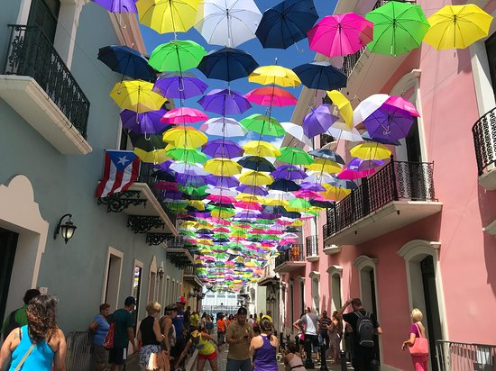 Flavors of San Juan Food and Culture Tours Photo