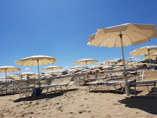 Bagno Conchiglia Cervia : Photo g picture of hotel conchiglia cervia tripadvisor