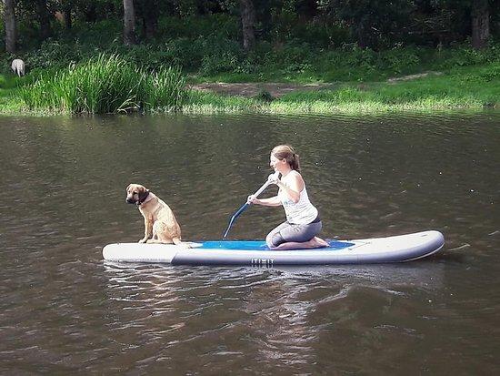 Ervedal da Beira, โปรตุเกส: Paddle Board Rentals