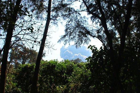 Krakatau Volcano (Krakatoa) Picture