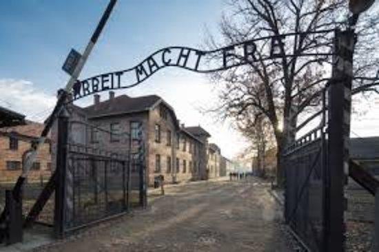 Auschwitz Pictures Now