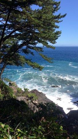 Bilde fra Jogasaki Coast