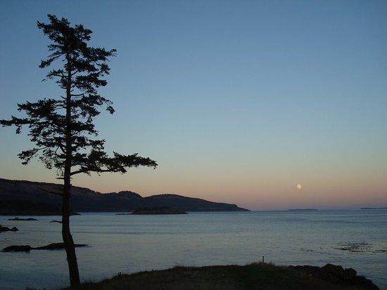 Poets Cove Resort & Spa: Sunset