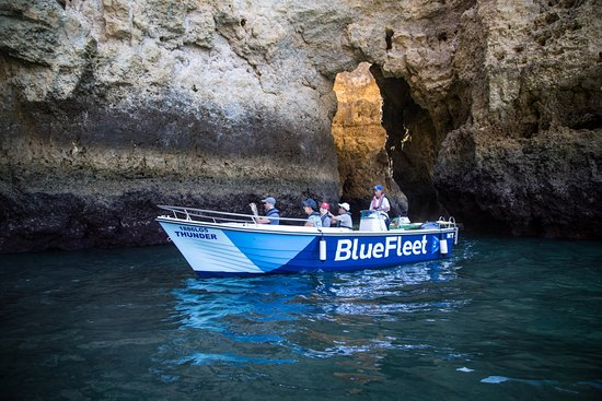 ‪BlueFleet - Boat Trips and Tours‬