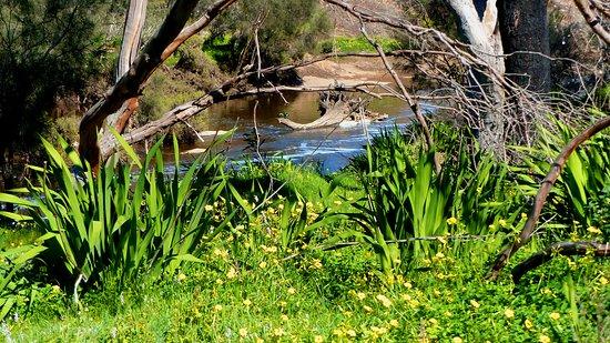 Brigadoon, Australia: Quiet corner of Bells Rapids