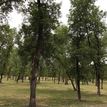 General Sibley Park: photo8.jpg