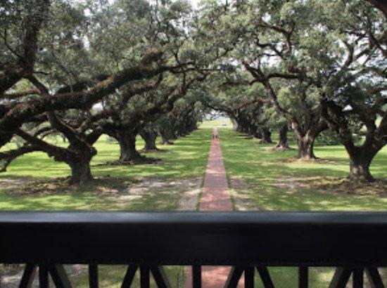 Oak Alley Plantation: Het klassieke beeld van de eiken