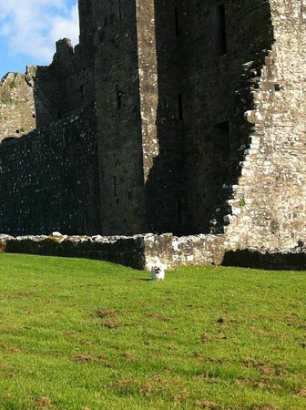 Fore Abbey (County Westmeath) - County Westmeath, Ireland