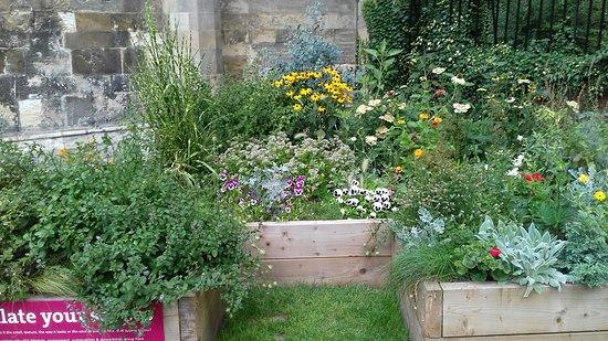 the lovely sensory garden fabulous smells and textures picture of deans park york tripadvisor - Sensory Garden