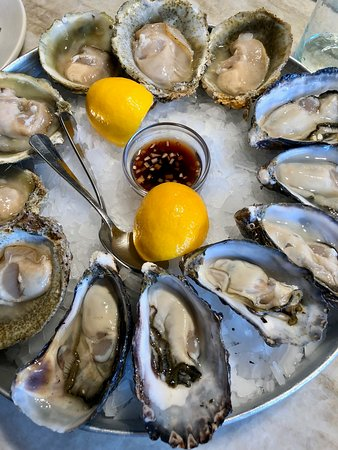 The Shucker Brothers: Bluffs above, Pacifics below! Great oysters!