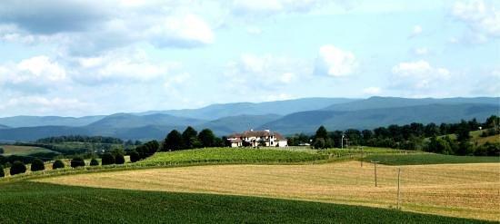 Bridgewater, Вирджиния: Bluestone Vineyard sits on top of a hill.