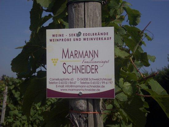 Familienweingut Marmann-Schneider