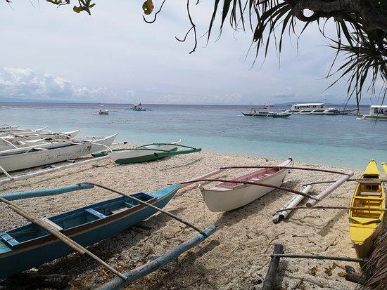 Balicasag Island, Philippinen: IMG_20180701_130806_large.jpg