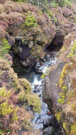 Фотография Tongariro National Park Visitor Centre (Whakapapa Visitor Centre)
