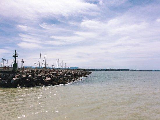 Porto Turistico Marina di Cattolica: Порт Каттолика