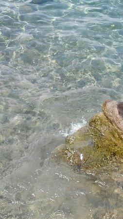 Spiaggia di Citara: 20180823_111114_large.jpg