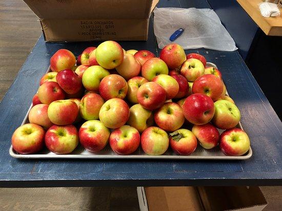 Sacia Orchards Apple Stand
