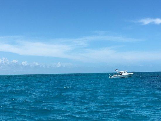 Florida Keys Dive Center: Tavernier diving