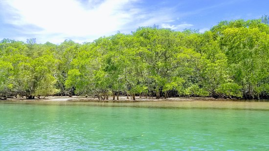 Ecotravel Tamarindo