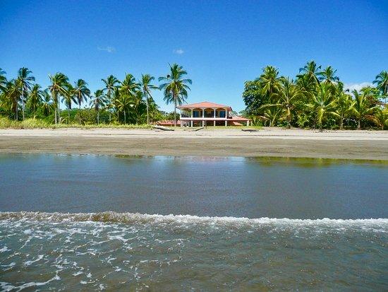 View Of Las Lajas Beach Resort From The Ocean Looking Back
