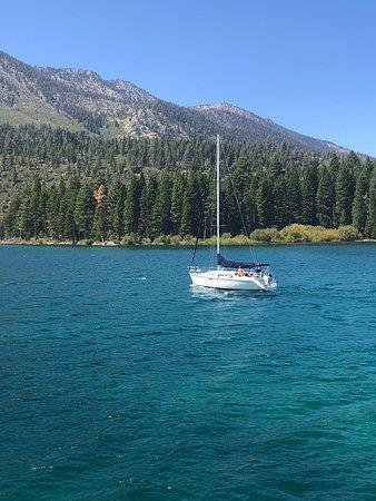 Bleu Wave Cruise Foto
