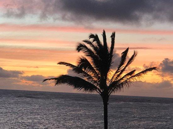 Punaluu, ฮาวาย: Paradise