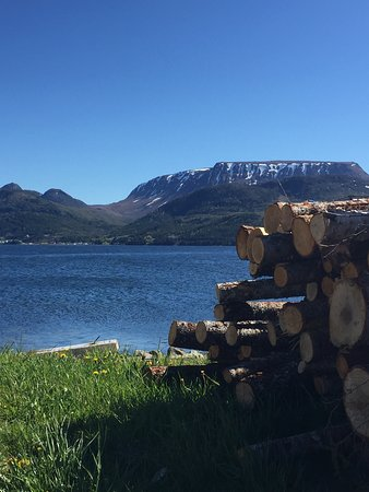 Wood Pile overlooking Bonne Bay at Woody Point.