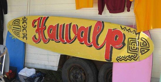 Жиронда, Франция: Ecole de surf!!!