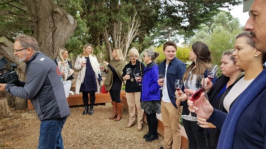 ‪Wilsons Wine Tours Geelong‬