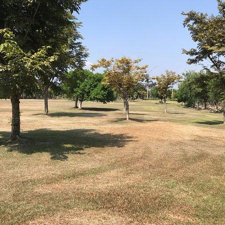 羅東運動公園:photo6.jpg