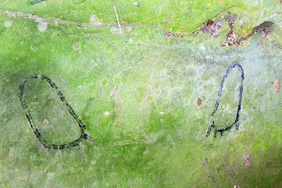 Leo Petroglyphs State Memorial