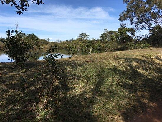 Cachoeira de São Bento: Trilha para a primeira queda