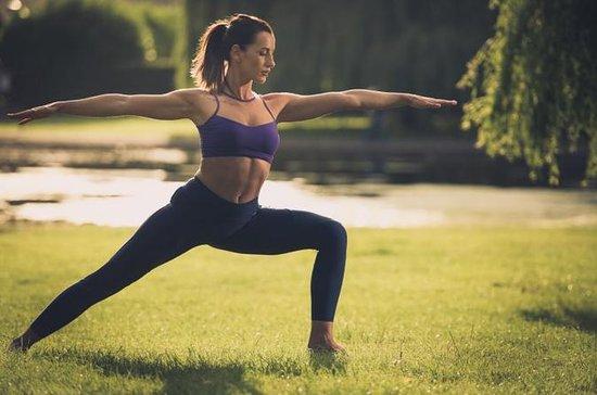 Yoga og meditasjon erfaring på Lodhi...