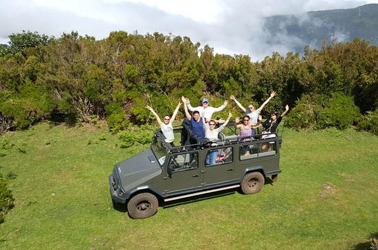 West 4x4 Full Day Small Group Tour...