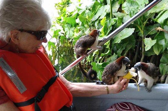Tour Monkey Island und Indianerdorf